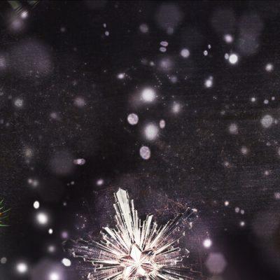 Minhas Distillery's Advent Calendar perfect gift for the Holidays - Day 7 Platinum Caesar Vodka & Titanium Caesar Vodka