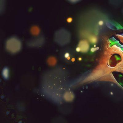 day-9-advent-calendar-minhas-spirits-blumers-absinthe-hd