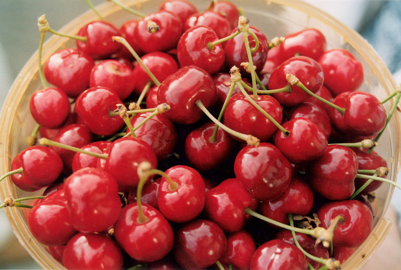 How to Make a Margarita With Fresh Cherries | Minhas