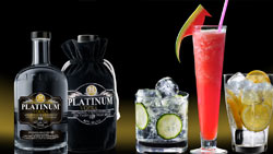Recipes and Videos on how to make vodka martinis and vodka tonic